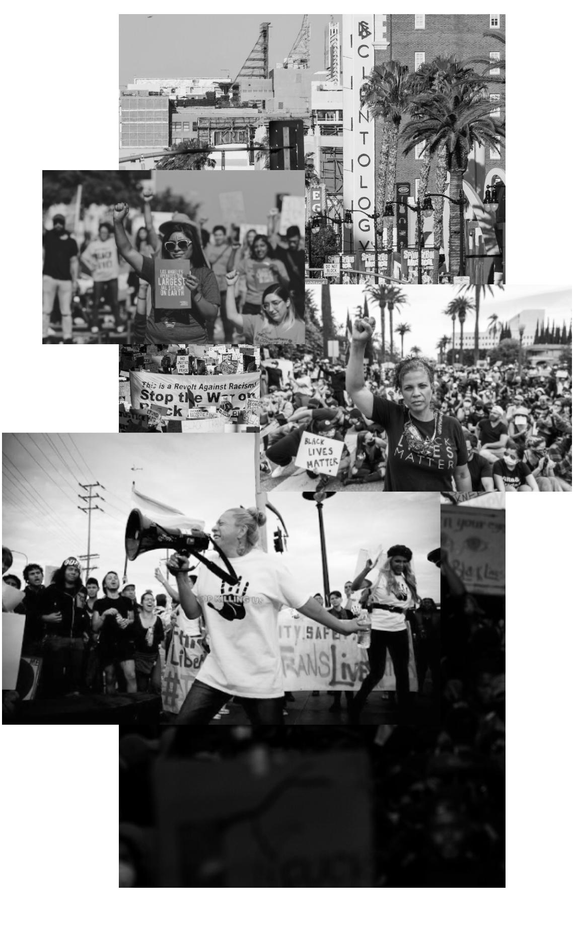 Meet the movement